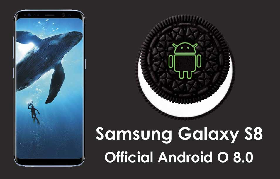Program Oreo 0 Beta Starts Android Samsung S8 8 For Galaxy
